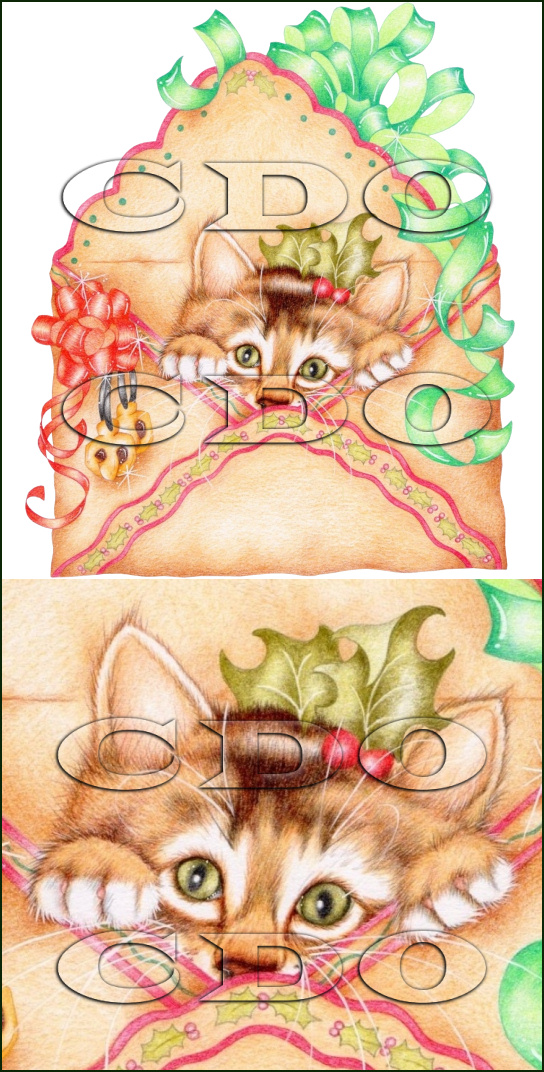 Karen Middleton Bonus Tube December 2013