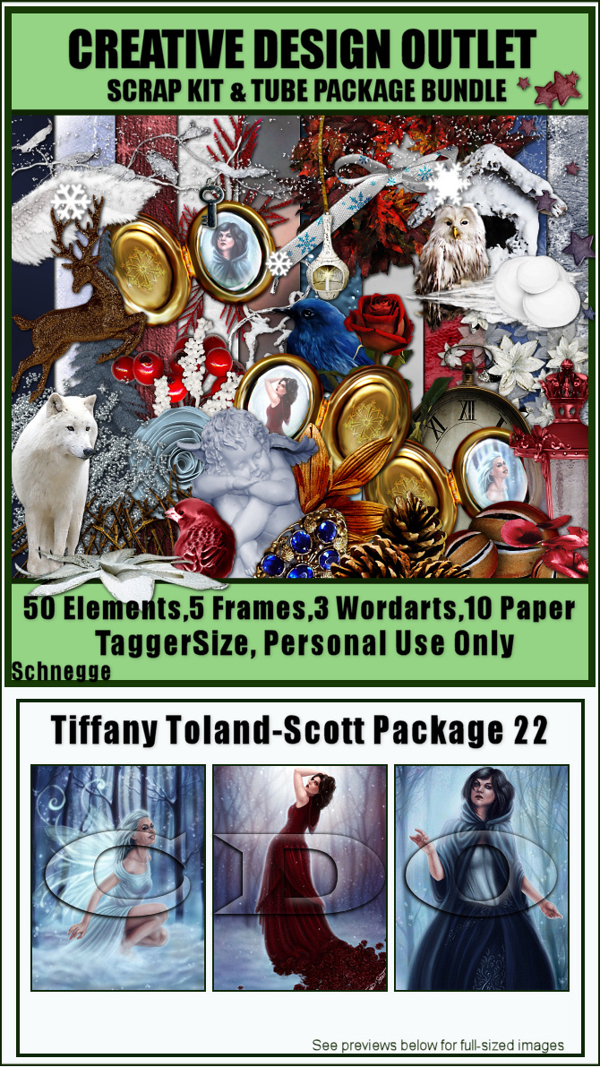 ScrapSchnegge_TiffanyTolandScott-Package-22