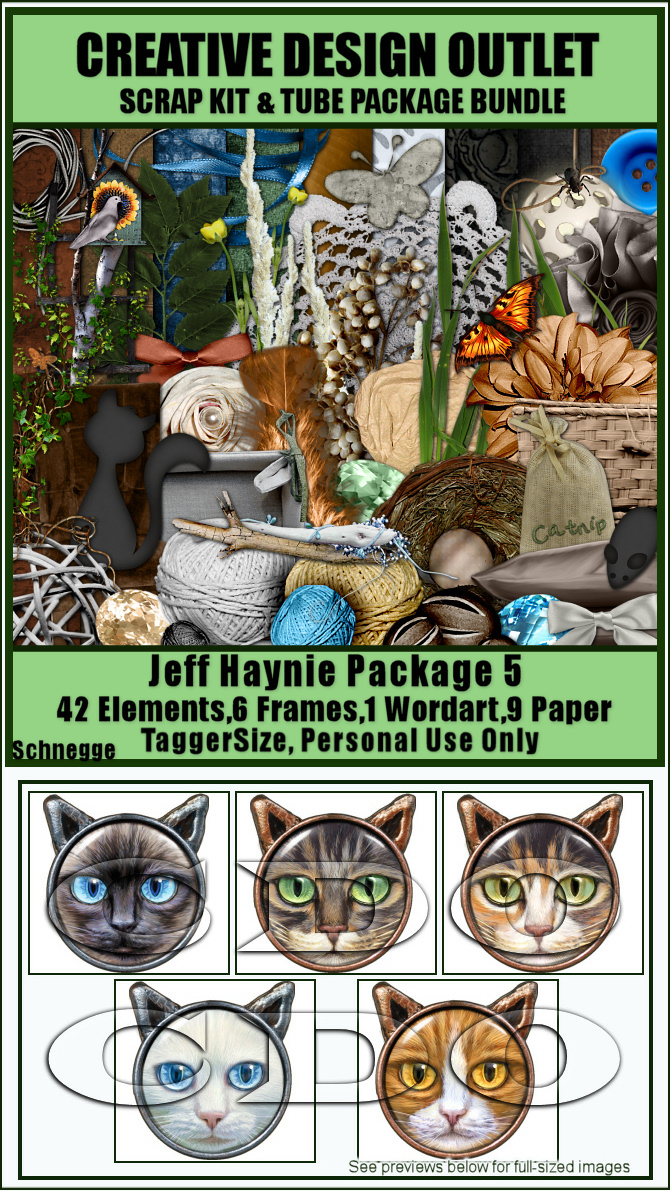 ScrapSchnegge_JeffHaynie-Package-5